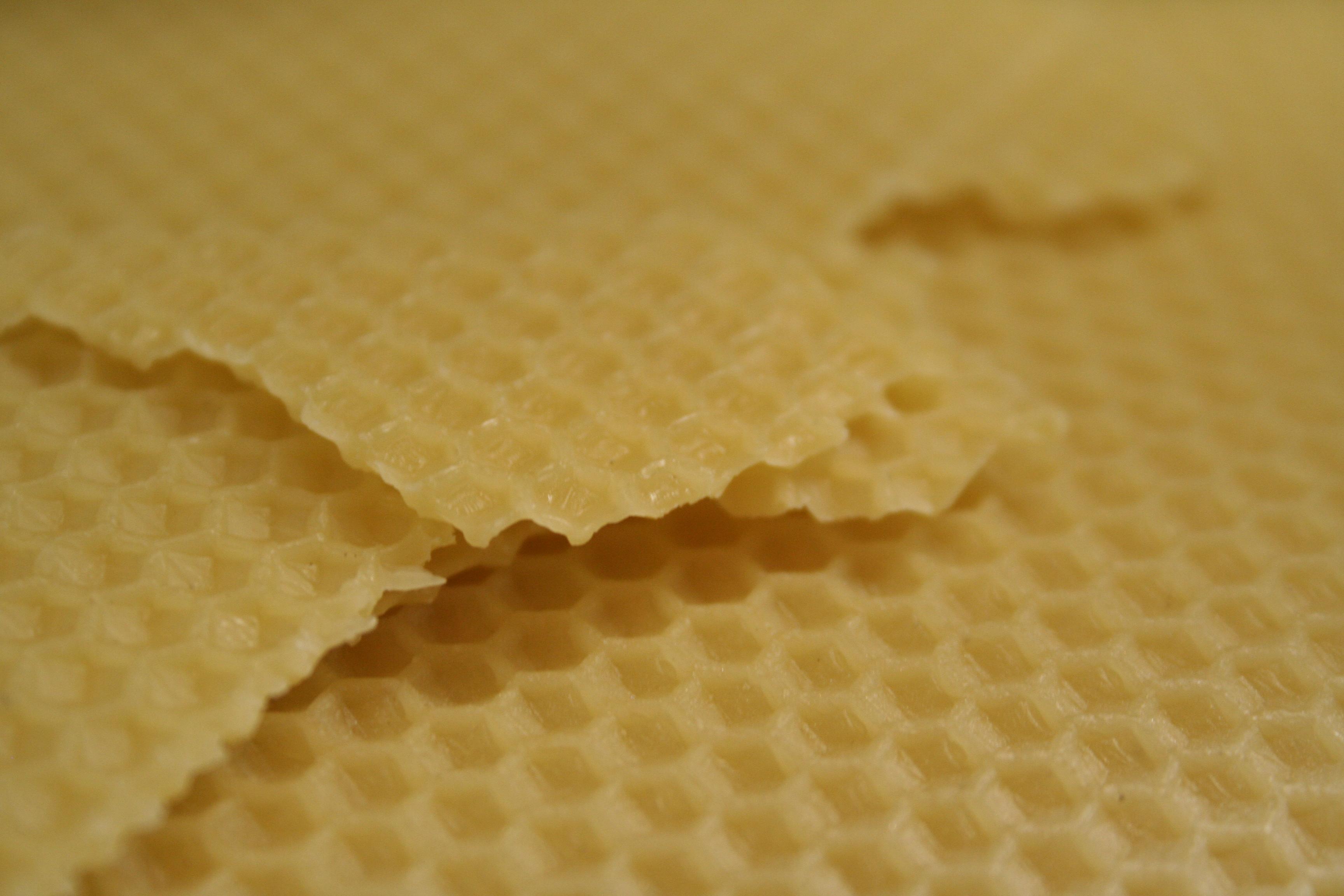 Cera d api di opercolo pregiata in foglibiologica - Cera d api per legno esterno ...