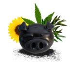 maialoso nero crema solida corpo naturale al vetiver
