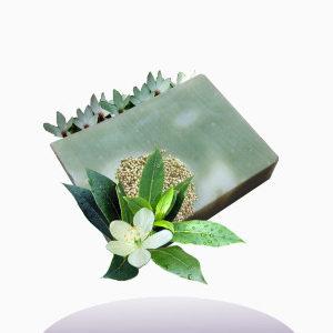 sapone antibatterico al tea tree