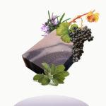 sapone al vino nebbiolo, salvia e rosmarino