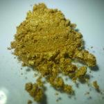 Mica Maya Gold, oro Maya